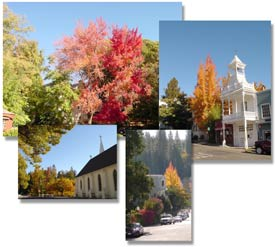 Fall in Nevada city